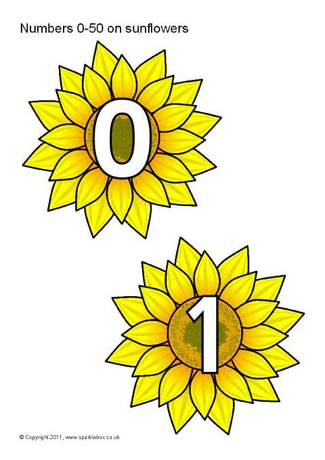 numbers    sunflowers sb sparklebox