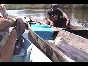 The biggest giant electric eel - YouTube