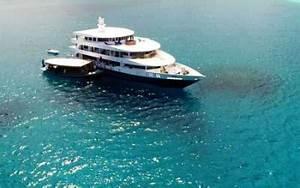 Forum Croisiere Ocean Indien : voyages plong e sous marine partez en croisi re ou s jour plong e avec oc anes ~ Medecine-chirurgie-esthetiques.com Avis de Voitures