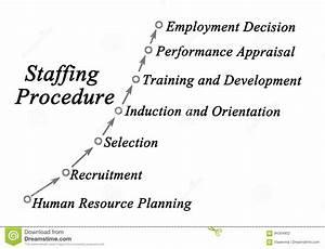 Staffing Procedure Stock Photo  Image Of Diagram  Resource