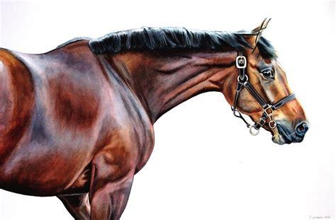 artist horse equestrian leger barnsley alternative alternativebarnsley