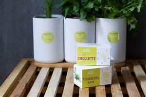 Cultiver Des Champignons De Paris Sans Kit : lilo le potager d 39 int rieur connect rhapsody in green ~ Melissatoandfro.com Idées de Décoration