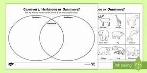 Omnivore Carnivore Or Herbivore Venn Diagram Sorting Worksheet