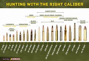 Handgun Bullet Caliber Comparison Chart Use This Rifle Caliber Chart To Pick The Right Ammo For