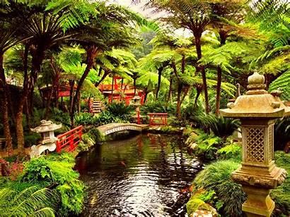 Garden Desktop Zen Japanese Japan Idea Water
