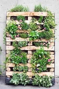 die grune palette vertikale bepflanzung einer europalette With katzennetz balkon mit green wall vertical garden