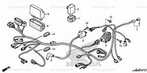 Honda Atv 2019 Oem Parts Diagram For Wire Harness  2