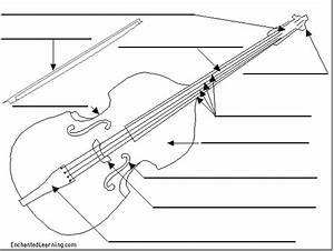 Label The Violin Printout