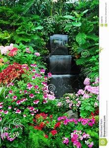 Blumen Im Garten : blumen wasserfall im garten lizenzfreie stockfotos bild 5399778 ~ Bigdaddyawards.com Haus und Dekorationen