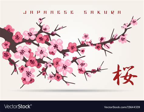 Japan cherry blossom tree branch Royalty Free Vector Image