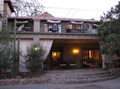 windhoek olive grove guest house