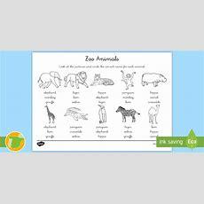 * New * A1 Ficha De Actividad Elige El Correcto  Animales Del Zoo En
