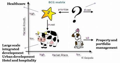 Analysis Business Bcg Matrix Portfolio Healthcare Sbu