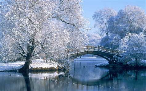 Background Images Winter Background Images 183 Free Awesome High