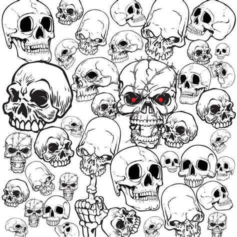 set  vector skull illustrations  templates