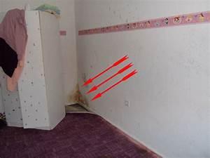 Schimmel In Wohnung Mietrecht : schimmel wohnung berall schimmelbefall baugutachten ~ Watch28wear.com Haus und Dekorationen