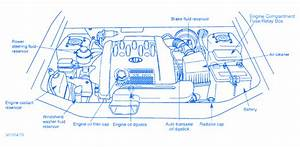 Kia Sedona 2005 Engine Part Electrical Circuit Wiring