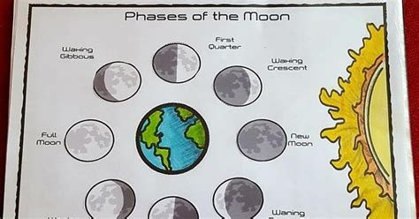 iman s home school phases of the moon interactive notebook page