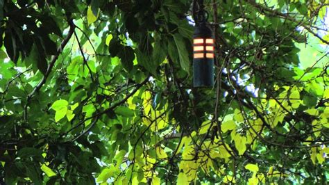 Tree Light Fixture by Hanging Tree Landscape Lighting Fixtures