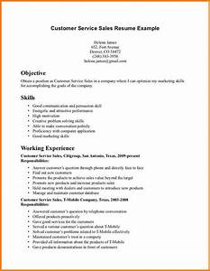 Examples Skills Resume Reference Types List Customer