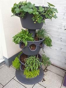 Vertikaler Garten Balkon : lechuza cascada pflanzbeispiel terrasse und garten pflanzen garten und balkon ~ Frokenaadalensverden.com Haus und Dekorationen