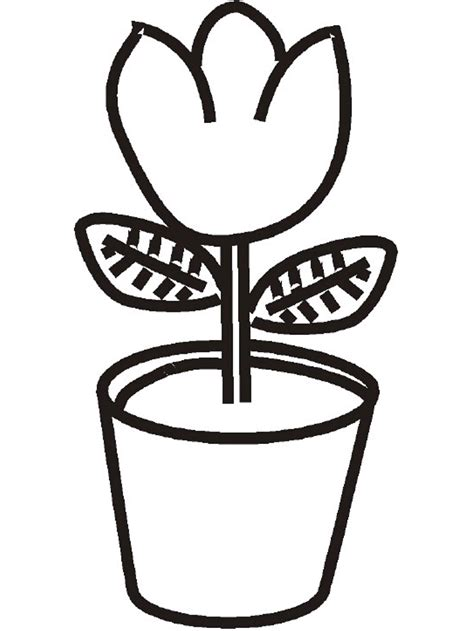 plant coloring pages plant coloring pages to and print for free