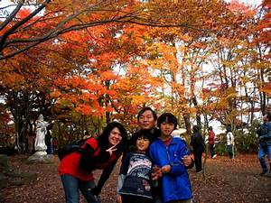 The Best Fall Foliage in Japan  Fall