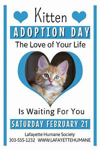 12 best lost pet and pet adoption flyers images on With dog adoption flyer template