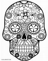 Coloring Skull Sugar Pages Grown Ups sketch template