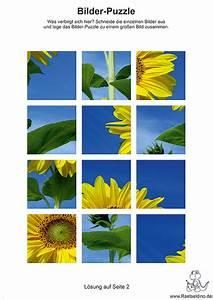 Puzzle Zum Ausdrucken : bilderpuzzle f r kinder zum gratis ausdrucken ~ Lizthompson.info Haus und Dekorationen