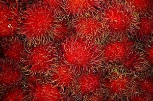 Rambutan Another Thai Fruit