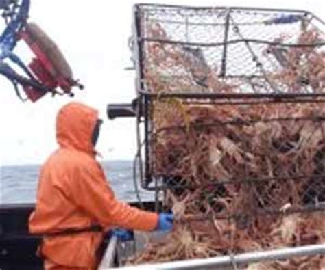 Crab Fishing Boat Jobs by Alaska Crabbing Jobs