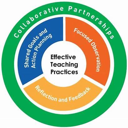 Coaching Practice Based Pbc Training Coach Teaching