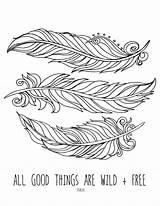 Feather Coloring Feathers Pages Printable Sheets Peacock Bird Colouring Eagle Lostbumblebee Printables Template Mandala Mdbn Grown Donate Adult Drawing Personal sketch template