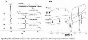 Understanding The Precipitated Calcium Carbonate  Pcc
