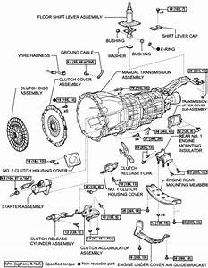 Manual Clutch Parts Diagram  U2022 Downloaddescargar Com