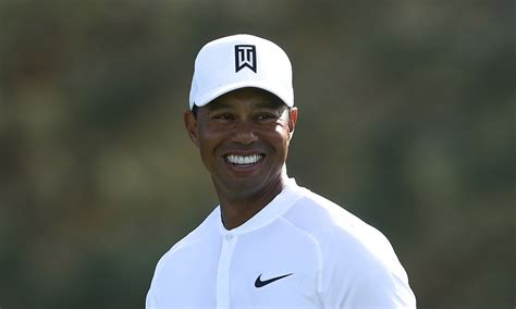 One graph will make Tiger Woods fans so very happy