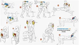 Best Tricep Exercises For Bodybuilding