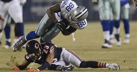 images bears  cowboys