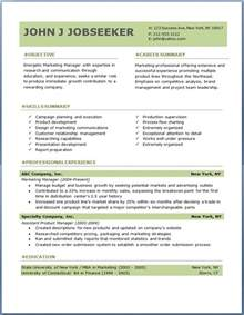 professional resume template accountant cv document template free professional resume templates download resume downloads