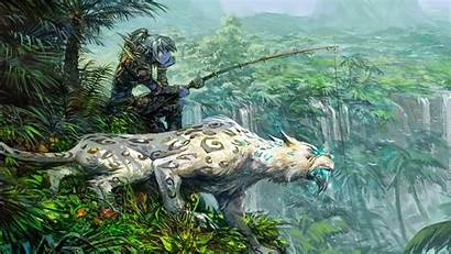 Hunter Warcraft Wallpapers Wow Games