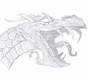Dragon Face by MrHacky on DeviantArt