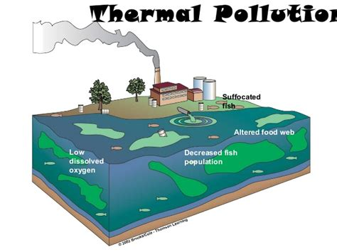 tidal energy  thermal pollution