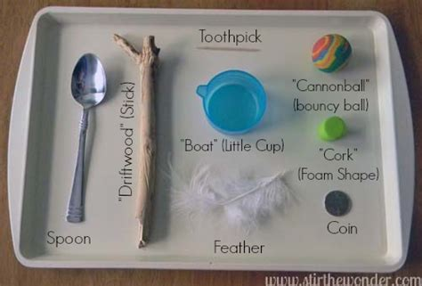 sink or float experiment 10 science activities for kids based on children 39 s books