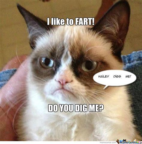 Cat Fart Meme - farting cat by 956008278 meme center