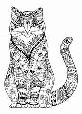 Coloring Cat Pages Adults sketch template