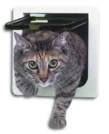 cat flap cat flap fitter in cat flap fitting in