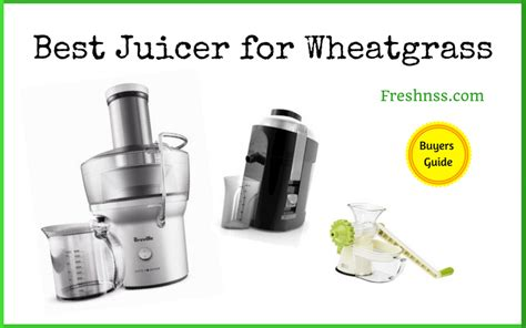 juicer wheatgrass freshnss