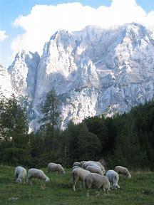 Slovenian Mountain Trail Hiking