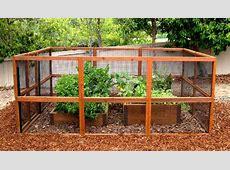 Gardens Boxes, Proof Gardens, Gardens Fence, Chicken Wire
